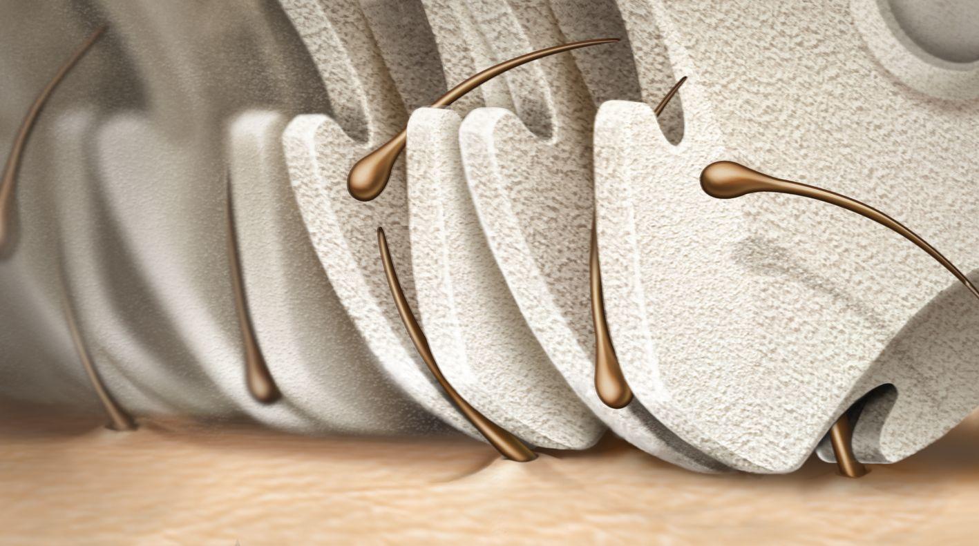 Ceramica acquistare epilatore